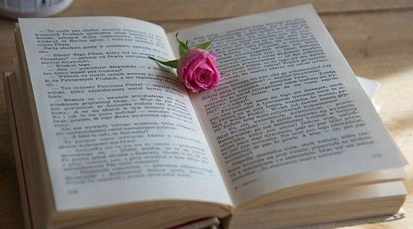 Las mejores novelas románticas del momento