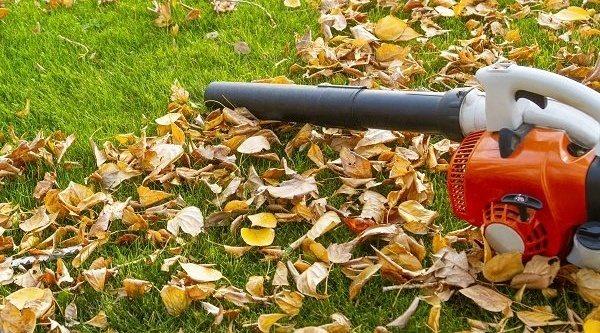 Los mejores aspiradores sopladores para jardín
