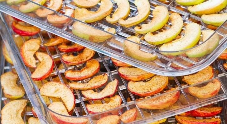 Los mejores deshidratadores de alimentos del mercado