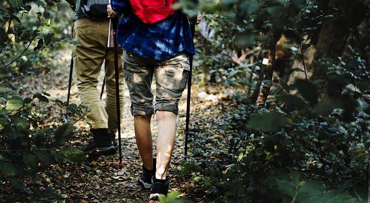 Los mejores bastones para practicar senderismo